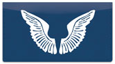 Angel Wings Checkbook Cover