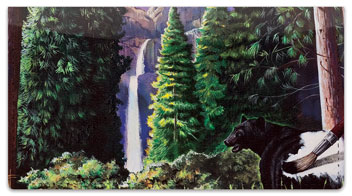 National Parks Checkbook Cover