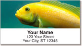 World of Fish Address Labels