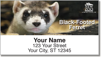 NEW Zoo Endangered Species Address Labels