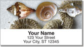 Beach Finds Address Labels