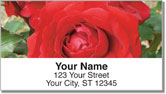 Blooming Rose Address Labels
