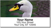 Swan Song Address Labels