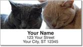 Cat Nap Address Labels