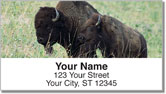 American Bison Address Labels