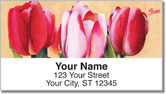Floral Series 7 Address Labels