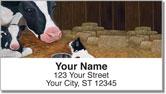 Contemplating Cats 3 Address Labels