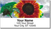 Bulone Bloom Address Labels