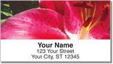 Bulone Floral Address Labels