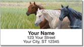 Madaras Horses Address Labels