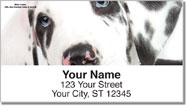 Great Dane Pup Address Labels