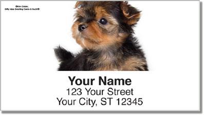Yorkie Pup Address Labels