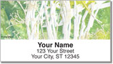 Beachy Address Labels
