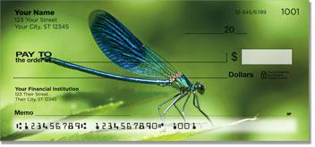 Dragonfly Checks