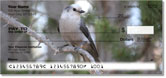 Gray Jay Bird Checks