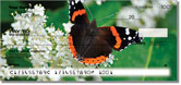 Red Admiral Butterfly Checks