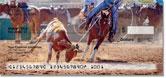 Rodeo Checks