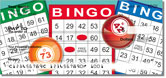 Bingo Checks