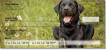 Black Labs Checks
