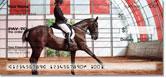Equestrian Checks