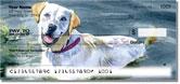 Dog Artwork Checks