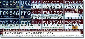 Michigan License Plate Checks