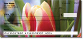 Tulip Checks