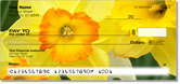 Golden Daffodil Checks