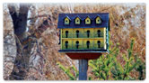 Rustic Birdhouse Checkbook Cover