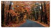 Fall Drive Checkbook Cover