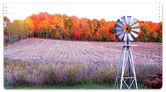 Fall in the Country Checkbook Cover