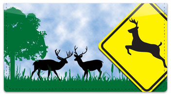 Road Sign Checkbook Cover