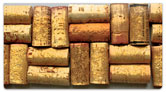 Cork Collection Checkbook Cover