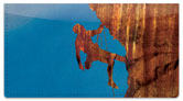 Rock Climber Checkbook Cover