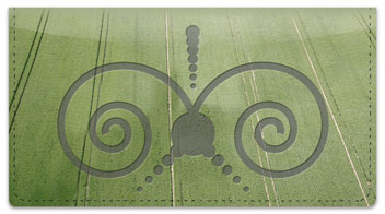 Crop Circle Checkbook Cover