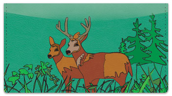 Big Buck Checkbook Cover