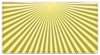 Yellow Starburst Checkbook Cover