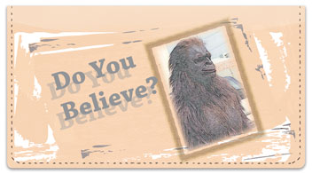 Bigfoot Checkbook Cover