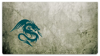 Dragon Tattoo Checkbook Cover