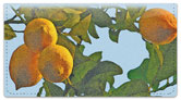 Fruit Tree Checkbook Cover
