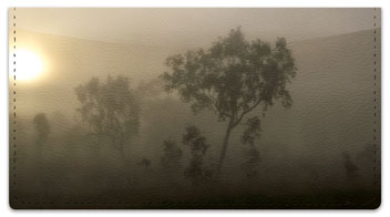 Foggy Day Checkbook Cover