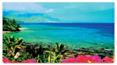 Hawaiian Landscape Checkbook Cover