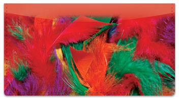 Flashy Feather Checkbook Cover