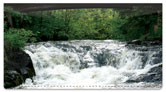 Rushing Rapids Checkbook Cover