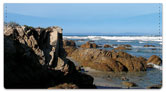 Rocky Coastline Checkbook Cover