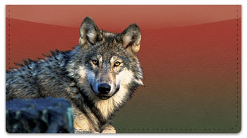 Wolf Checkbook Cover