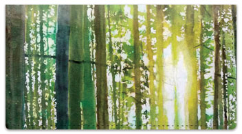 Forest Set Checkbook Cover