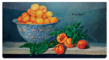 Shahmiri Still Life Checkbook Cover