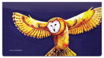 Nilles Owl Checkbook Cover