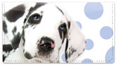 Great Dane Pup Checkbook Cover